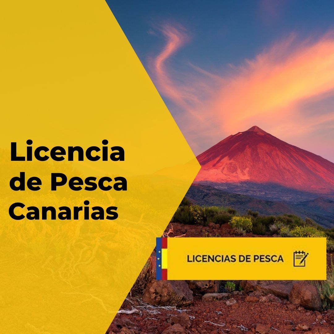 Licencia de pesca de Canarias